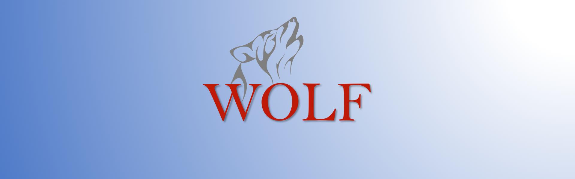 Mein Wolf Coaching-Ansatz